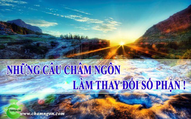 senziny-chamngon